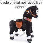 Ce ponycycle cheval noir a des freins.